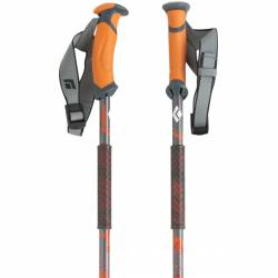 Bastoncini ski Black Diamond TRAVERSE