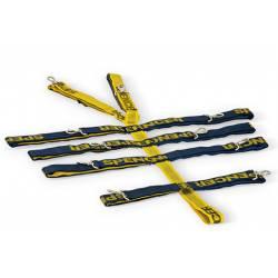 PIN STRAPS -Sistema di cinture a moschettone per tavola spinale