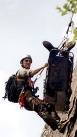 Barella soccorso UT2000